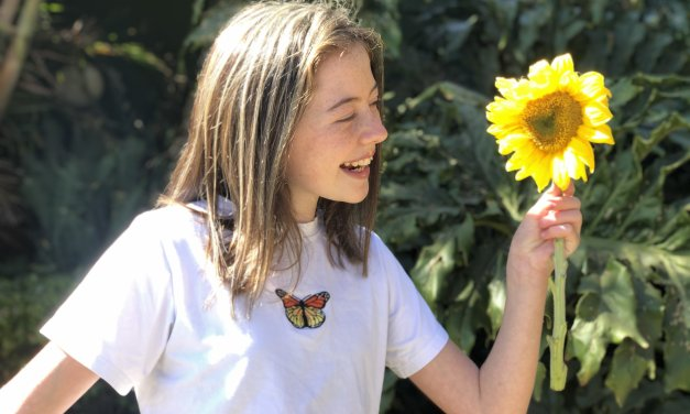 A lesson from the Sunflower